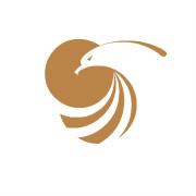 金鹰国际集团logo