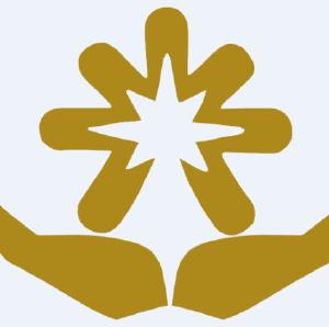 光彩资本logo