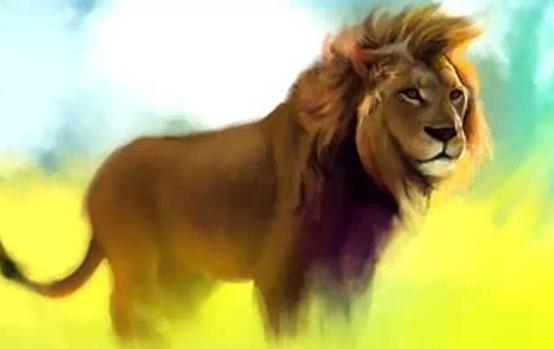聊天背景图片动物狮子