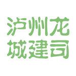 泸州龙城建司logo