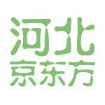 京东方(河北)移动显示技术有限公司logo