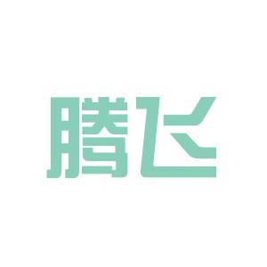 腾飞科技logo