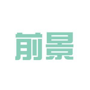 郑州前景科技有限公司logo