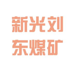 新光集团logo