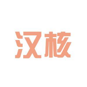 汉核网络科技logo