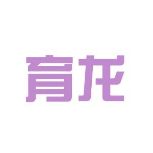育龙教育咨询logo
