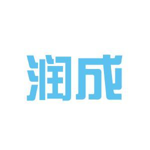 淮南润成科技股份有限公司logo