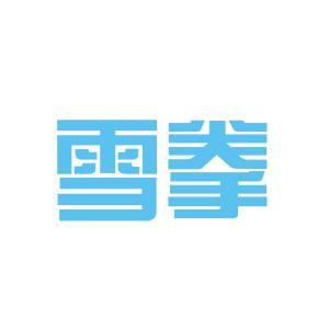 上海雪拳网络科技有限公司