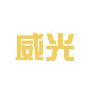 上海威光照明公司logo