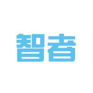 智者商贸有限公司logo