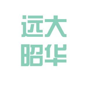 远大昭华logo