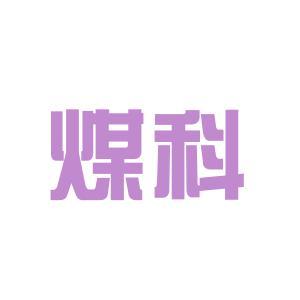 沈阳煤科院logo