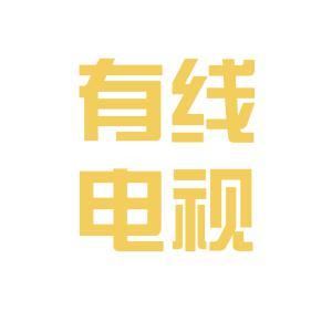 重庆有线宽视logo
