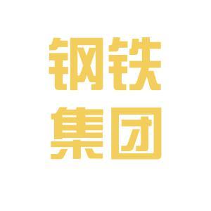 新钢公司logo