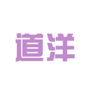 成都道洋电脑logo