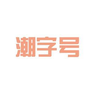 潮字号logo