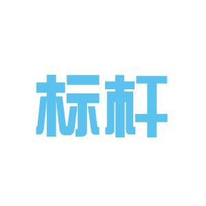 广州市标杆企业管理咨询有限公司logo