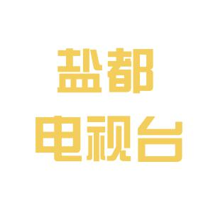 盐都电视台logo