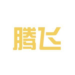 湘潭腾飞福特logo