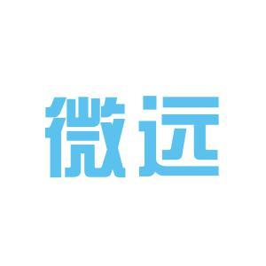 黄石市微远培训学校logo