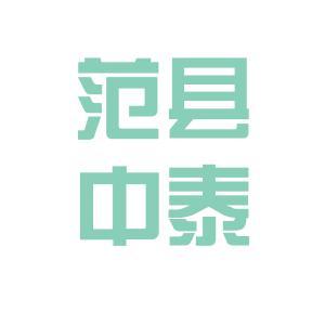 中泰电子科技logo