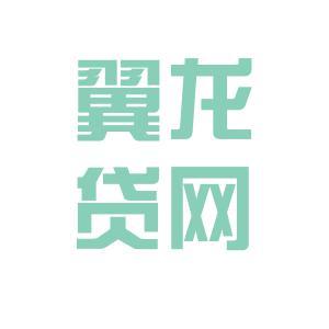 翼龙贷网logo
