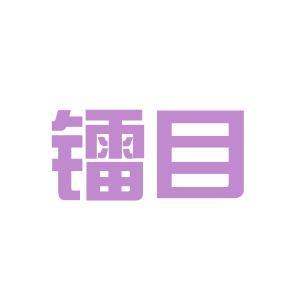 衡阳镭目公司logo