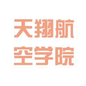 天翔航院logo