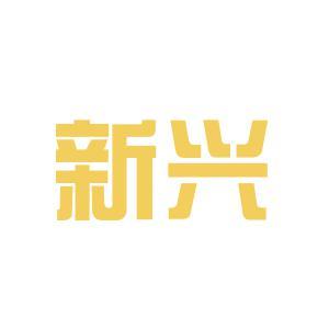 新兴集团logo