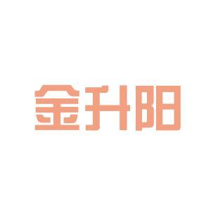 怀化金升阳logo