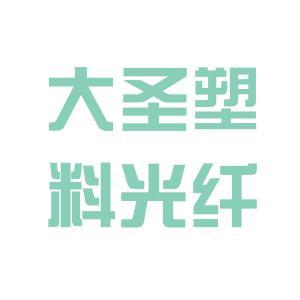 大圣塑料光纤logo