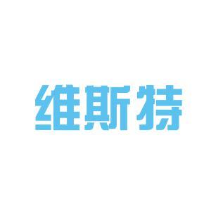 维斯特计算机软件开发logo