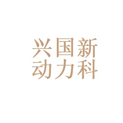 贵州兴国新动力科技有限公司logo
