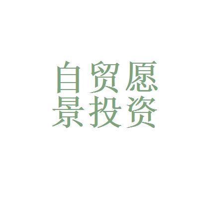 浙江愿景投资管理logo