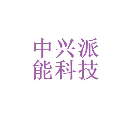上海中兴派能能源科技有限公司logo