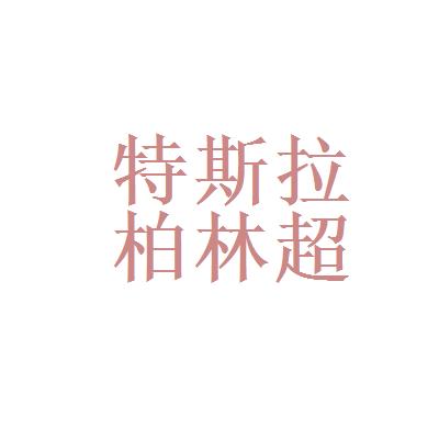 上海特斯拉超级工厂logo