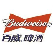 百威啤酒logo