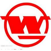 武漢鋼鐵(集團)公司logo