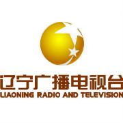 辽宁电视台logo