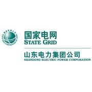 山东电力集团logo