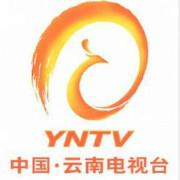 云南电视台logo