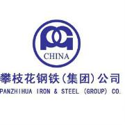 攀枝花钢铁集团logo