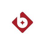 北京炳隆资产管理有限公司logo