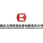 湖北力邦投资担保有限责任公司logo