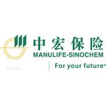 中宏logo