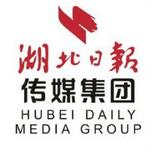 湖北日报传媒集团logo