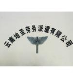 云南地圣劳务派遣有限公司logo