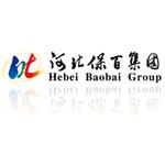 河北保百集团logo