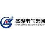 武汉盛隆电气集团有限公司logo