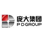 庞大汽贸集团股份有限公司logo